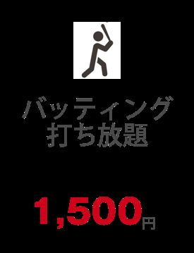 バッティング打ち放題 30分 1500円
